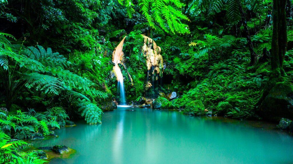 Azori-szigeteki vízesés
